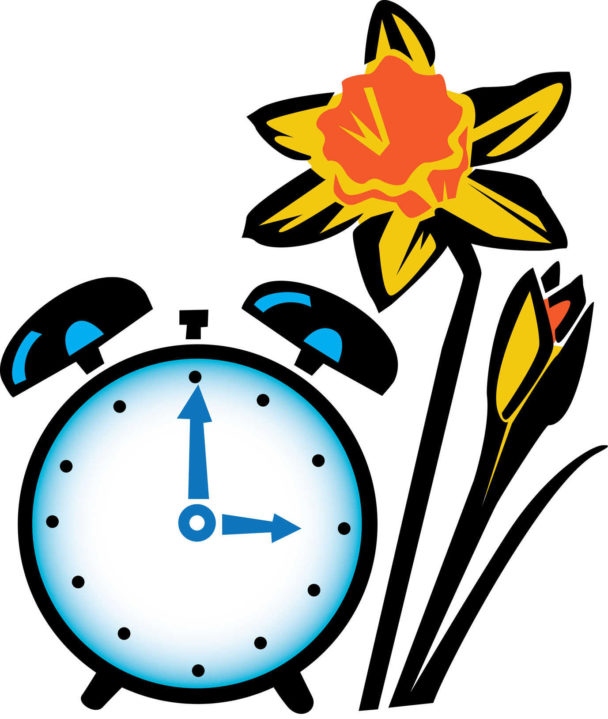 manual alarm clock with bells next to daffodils